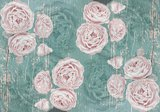 rozen op hout behang