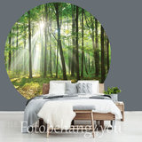 Behangcirkel Bos met zonlicht