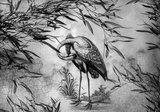 Kraanvogel op oude muur fotobehang