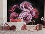 Rozen behang Waterdruppels