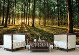 Bos fotobehang opkomende zon