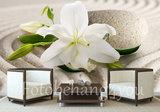 Witte lelie fotobehang