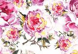 Aquarel rozen fotobehang