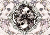 Dioscuri skulls fotobehang Alchemy
