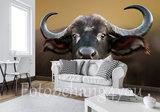 Buffel behang
