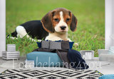Beagle behang