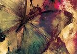 Butterfly Art fotobehang