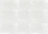 Bakstenen fotobehang wit