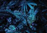 Palmbladeren fotobehang blauw