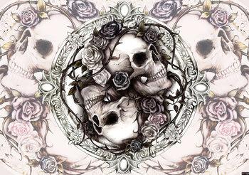 Dioscuri Skulls Alchemy fotobehang