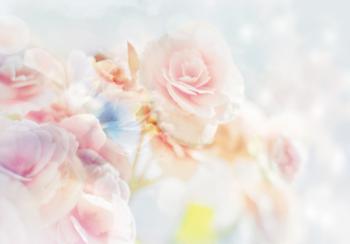 Bloemen fotobehang Pastel