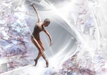Balletdanseres fotobehang