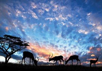 Herten fotobehang zonsondergang
