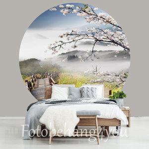 Behangcirkel Cherry Blossom