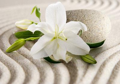 Zen fotobehang Witte Lelie