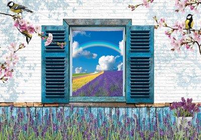 Korenbloemen raam 3D fotobehang